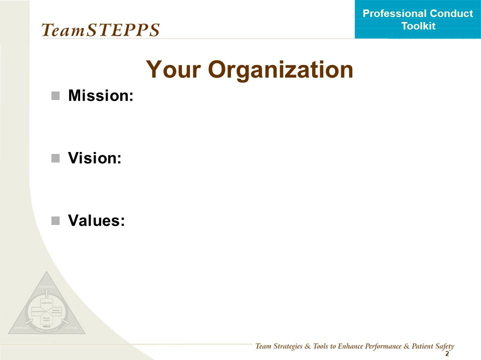 Your Organization Mission: Vision: Values: