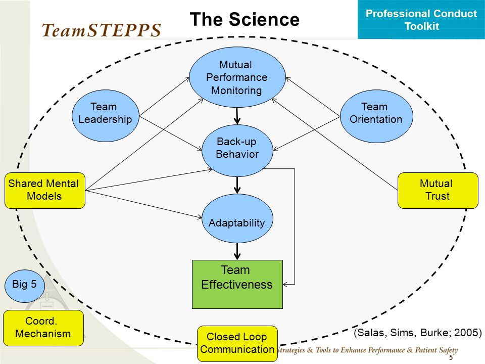 The Science Effectiveness Team Leadership Orientation Mutual