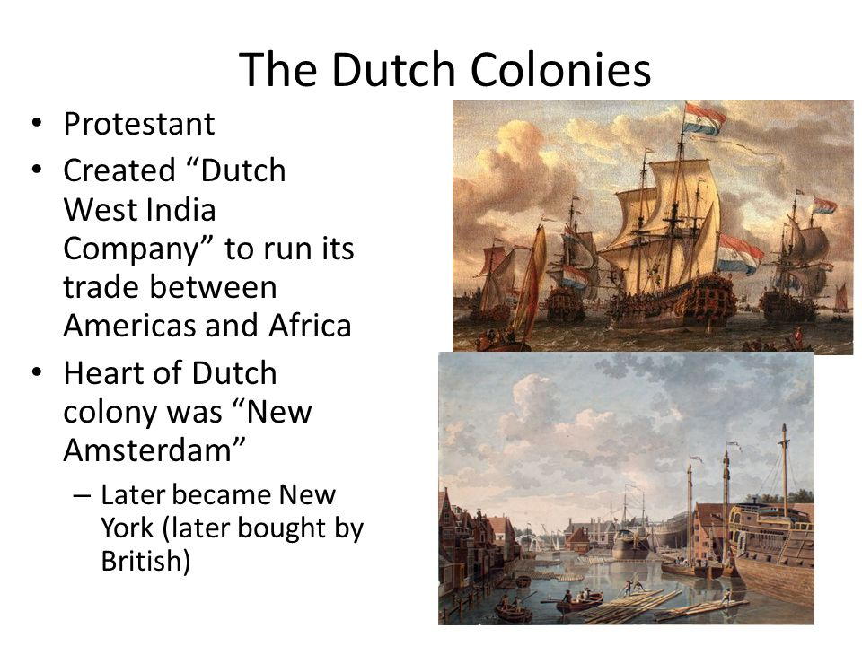 The Dutch Colonies Protestant