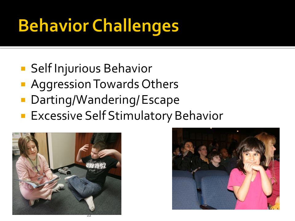 Behavior Challenges Self Injurious Behavior Aggression Towards Others