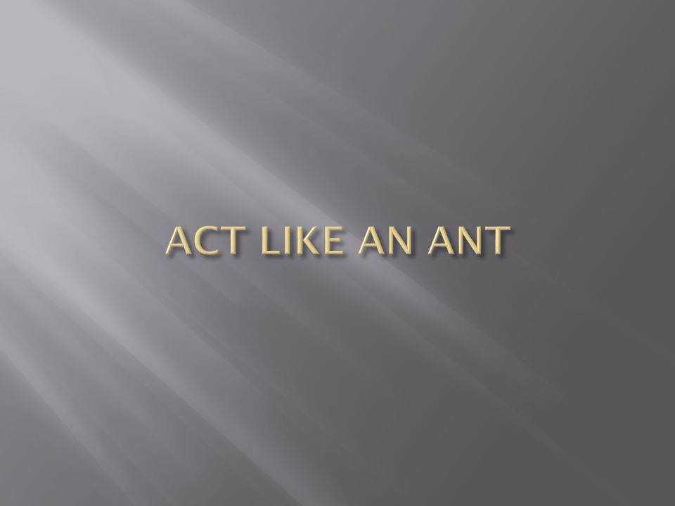ACT LIKE AN ANT