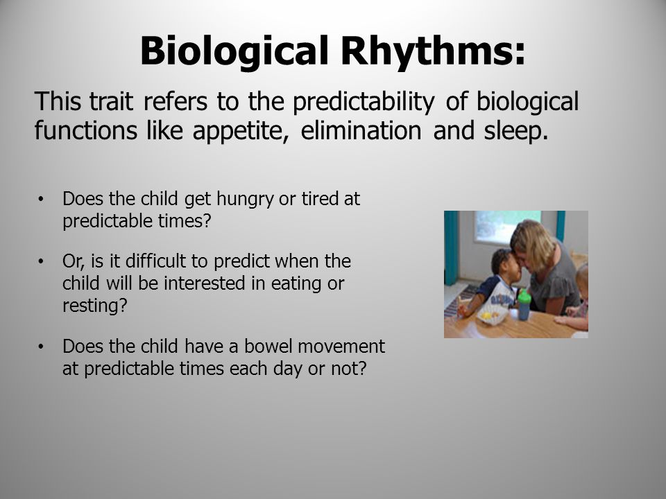 Biological Rhythms: This trait refers to the predictability of biological functions like appetite, elimination and sleep.