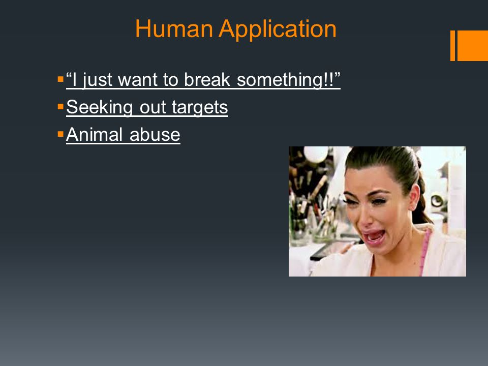 Human Application I just want to break something!!