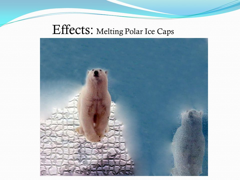 the day the polar ice caps will melt