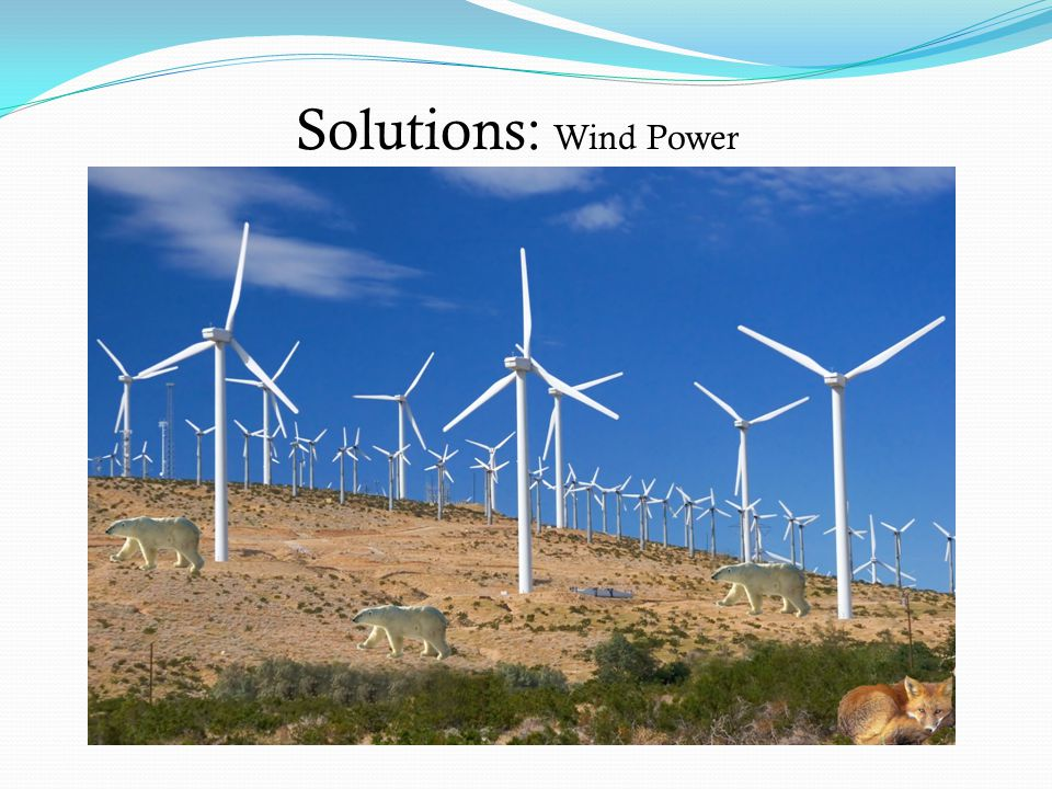 Solutions: Wind Power