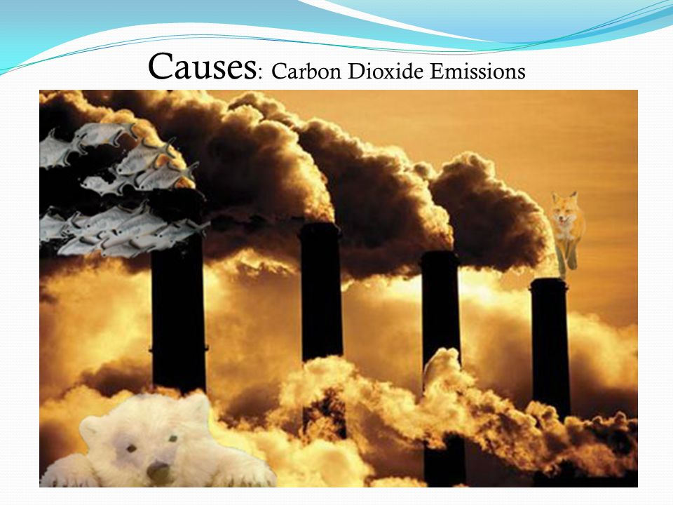 Causes: Carbon Dioxide Emissions