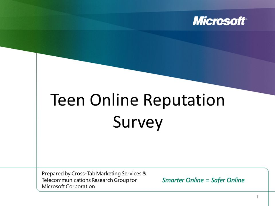 Teen Online Reputation Survey