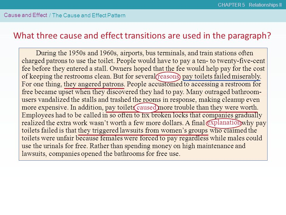 What three cause and effect transitions are used in the paragraph