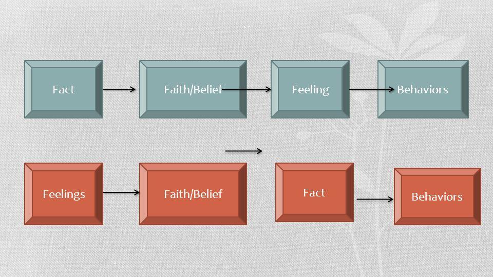Fact Faith/Belief Feeling Behaviors Feelings Faith/Belief Fact Behaviors