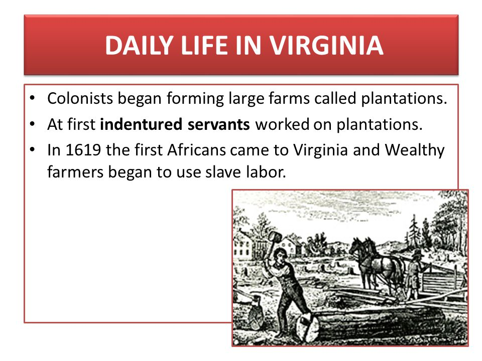 DAILY LIFE IN VIRGINIA Colonists began forming large farms called plantations. At first indentured servants worked on plantations.