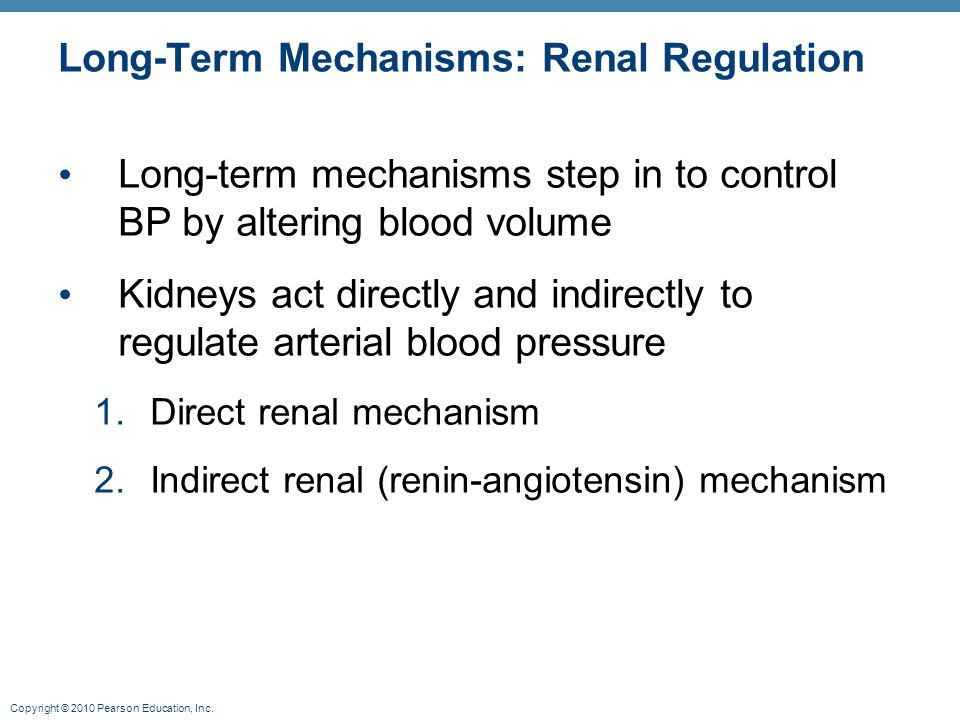 Long-Term Mechanisms: Renal Regulation