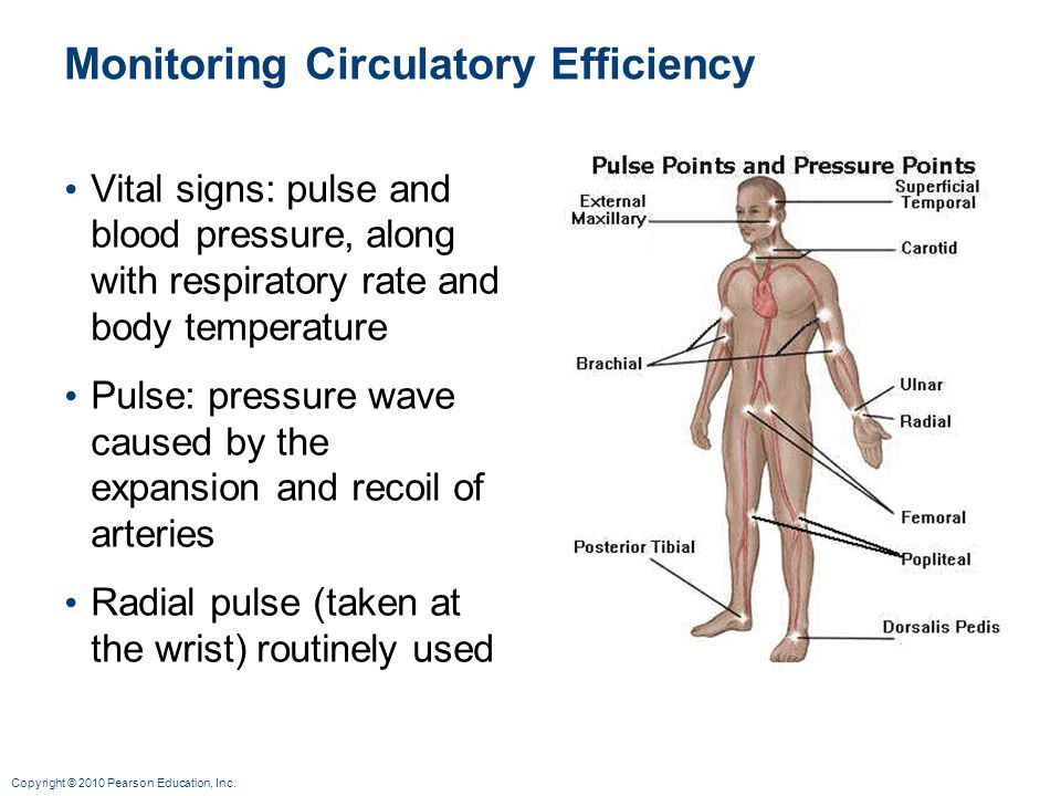 Monitoring Circulatory Efficiency