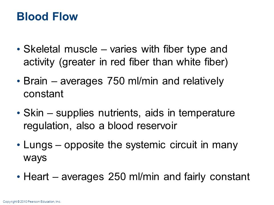 Blood Flow Skeletal muscle – varies with fiber type and activity (greater in red fiber than white fiber)