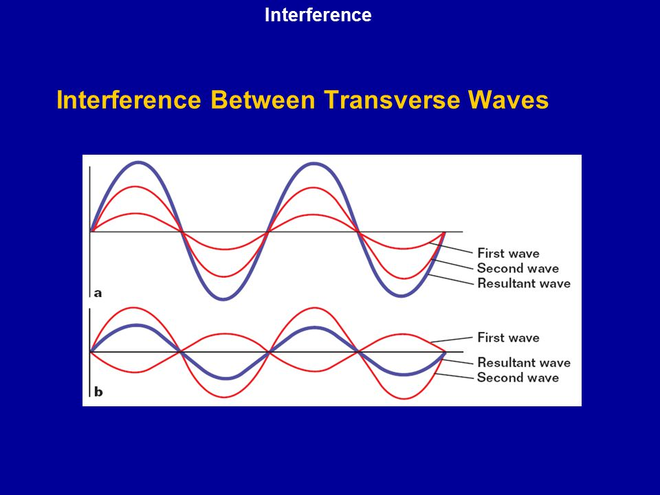 Interference Between Transverse Waves