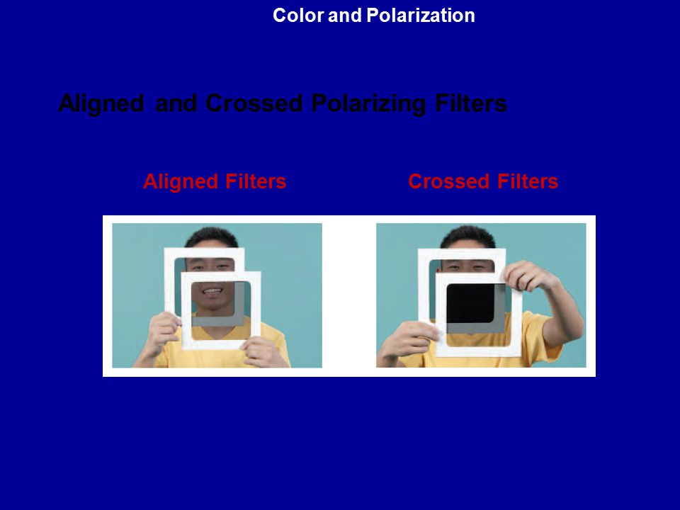 Aligned and Crossed Polarizing Filters