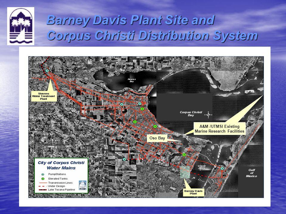 Barney Davis Plant Site and Corpus Christi Distribution System