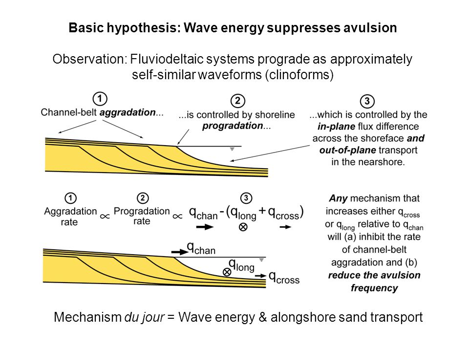 Basic hypothesis: Wave energy suppresses avulsion