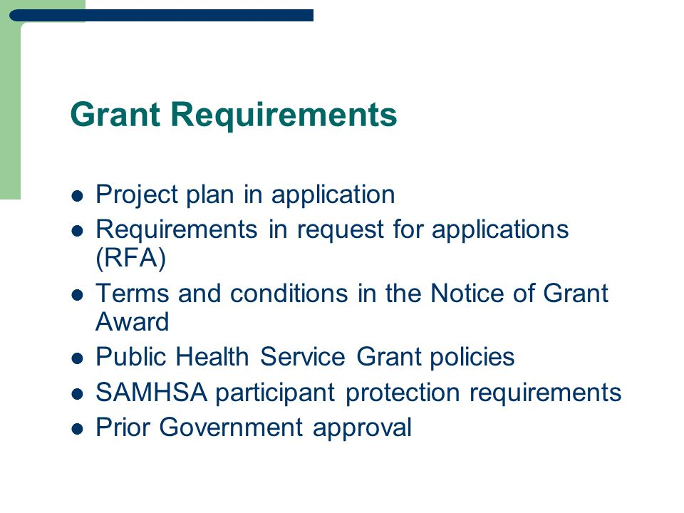 Grant Requirements Project plan in application