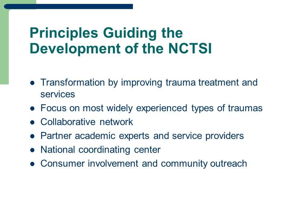 Principles Guiding the Development of the NCTSI