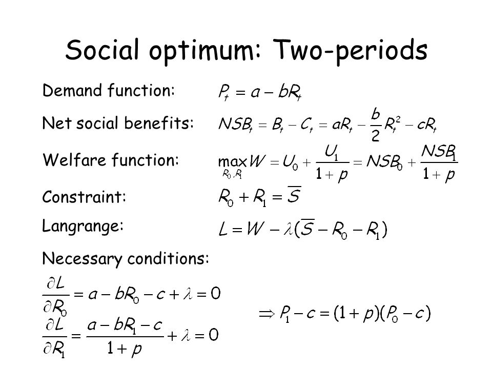 Social optimum: Two-periods