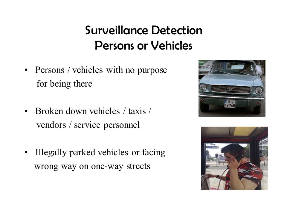 Surveillance Detection Persons or Vehicles