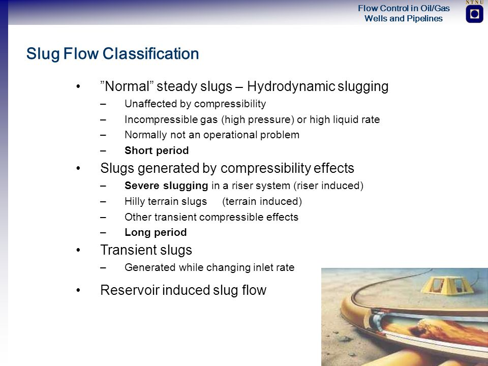 Slug Flow Classification