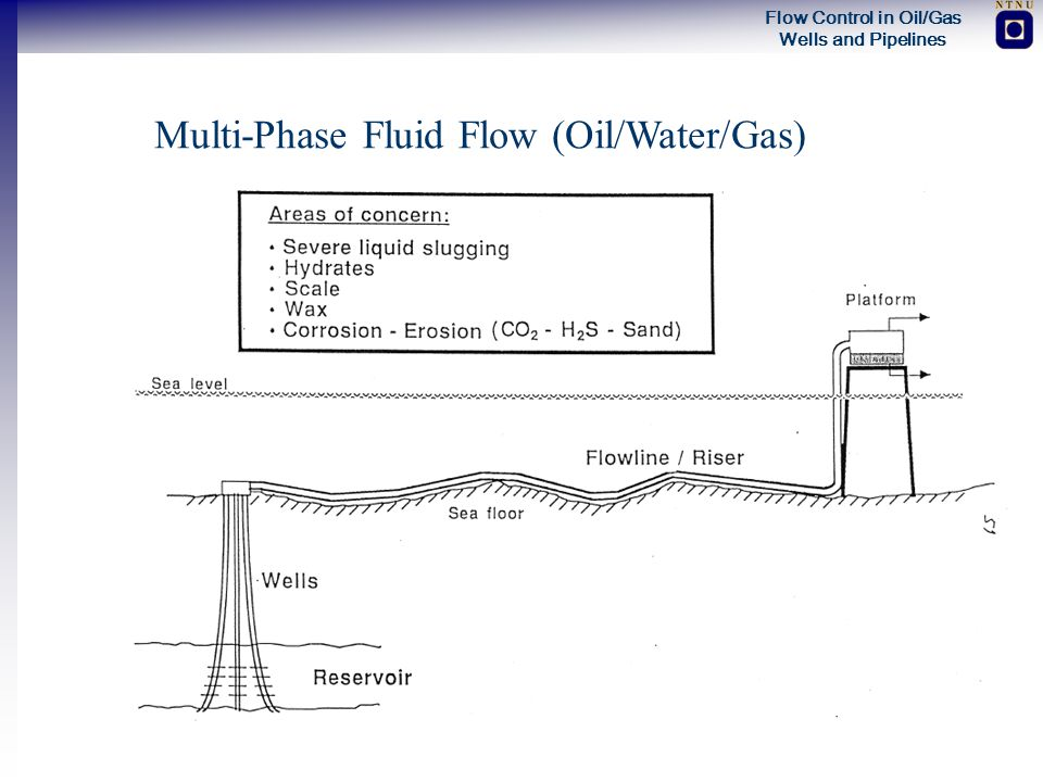 Multi-Phase Fluid Flow (Oil/Water/Gas)