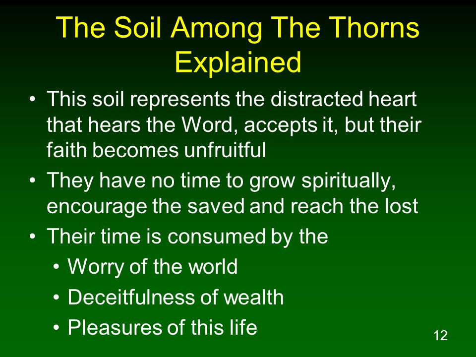 The Soil Among The Thorns Explained