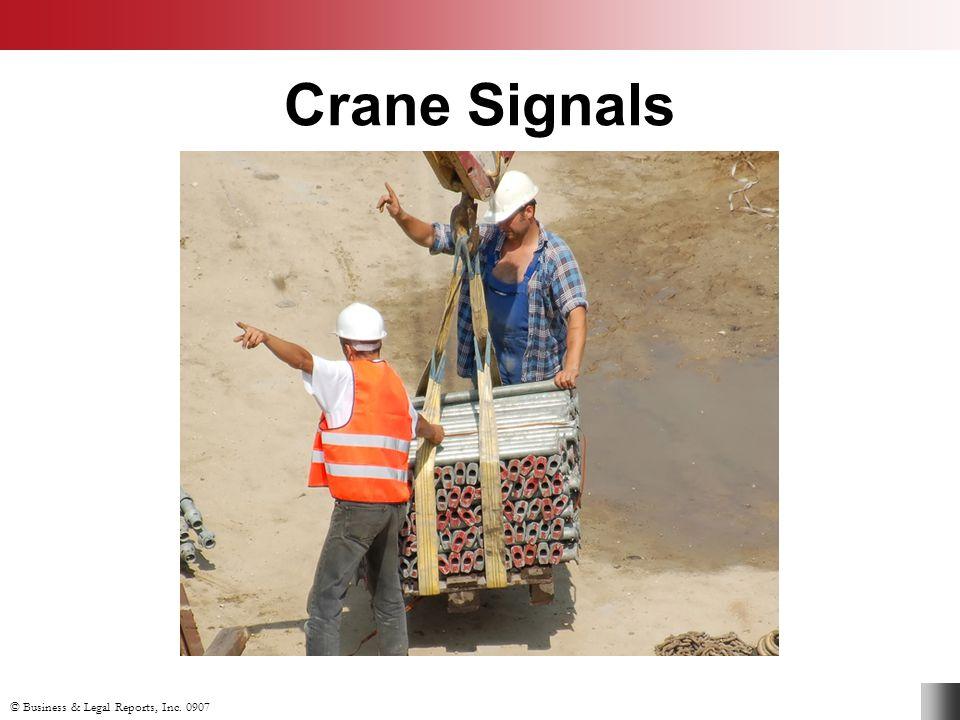 Crane Signals Slide Show Notes