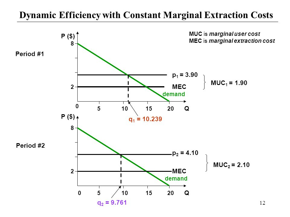 Dynamic Efficiency with Constant Marginal Extraction Costs