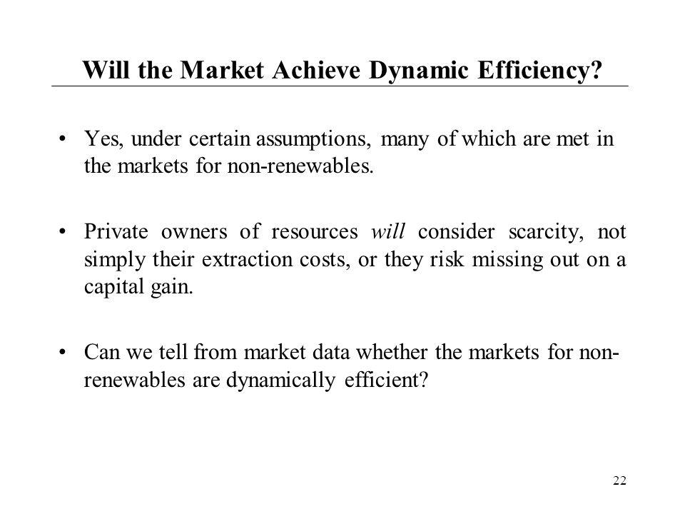 Will the Market Achieve Dynamic Efficiency