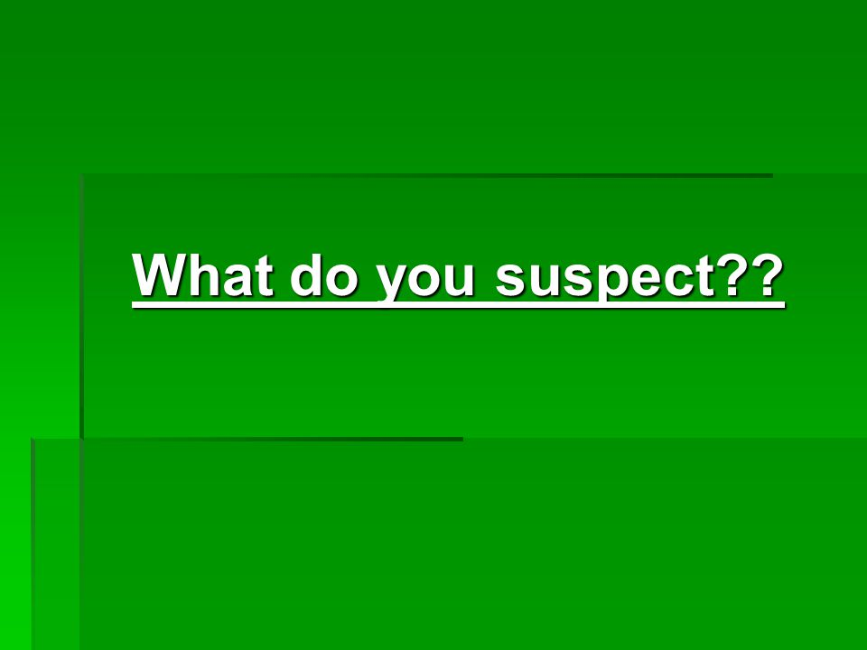 What do you suspect