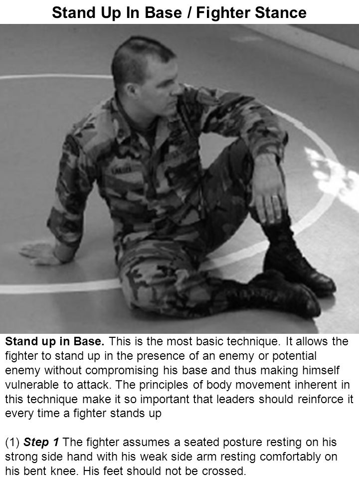 Stand Up In Base / Fighter Stance
