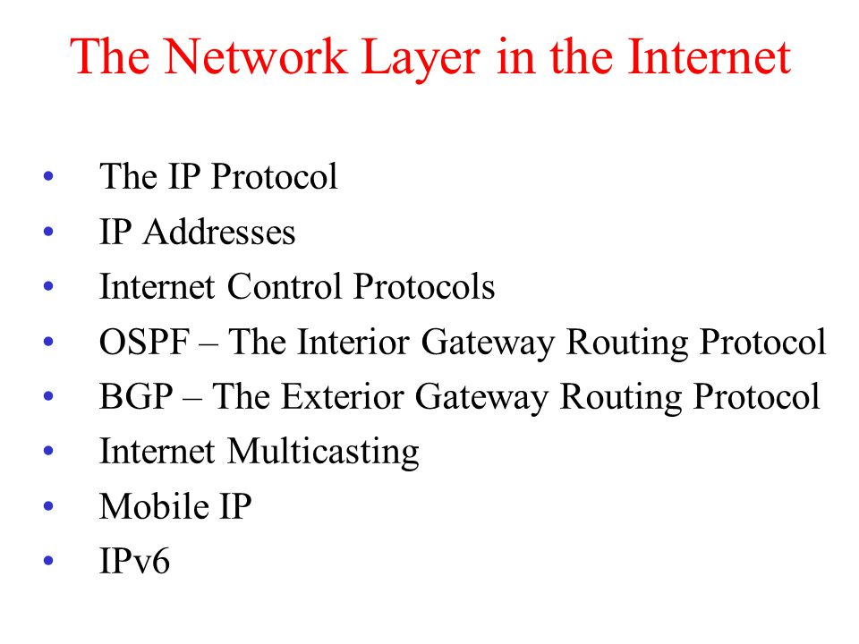 The Network Layer in the Internet