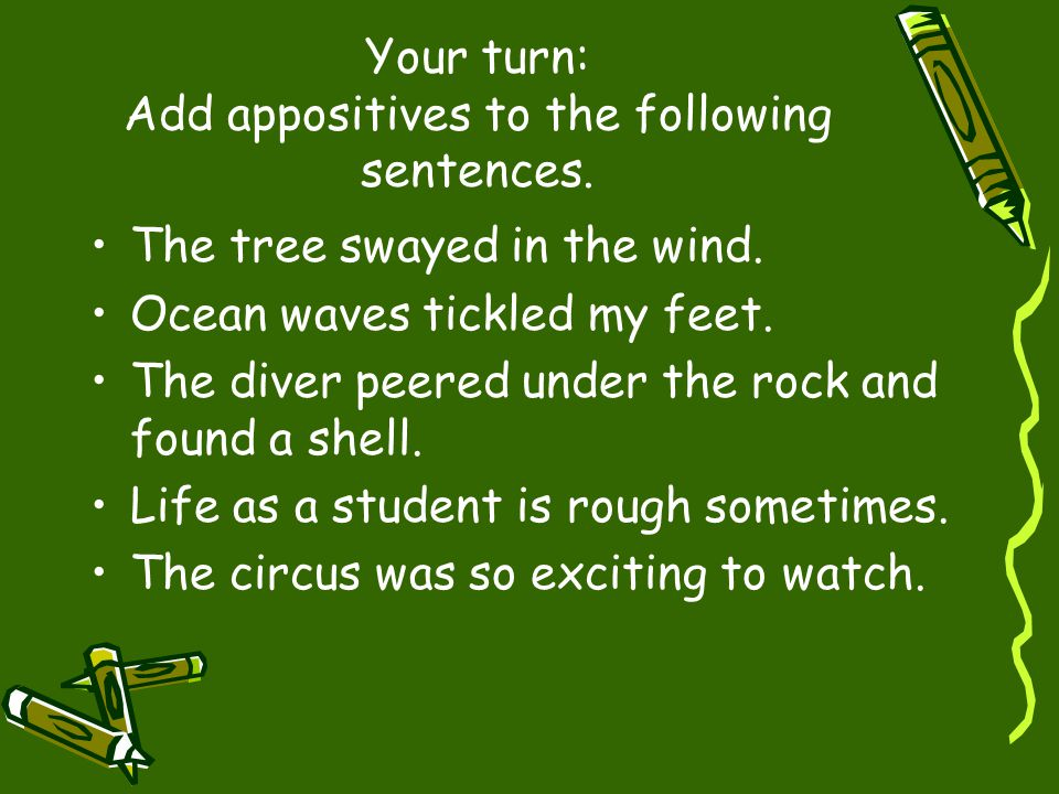 Your turn: Add appositives to the following sentences.