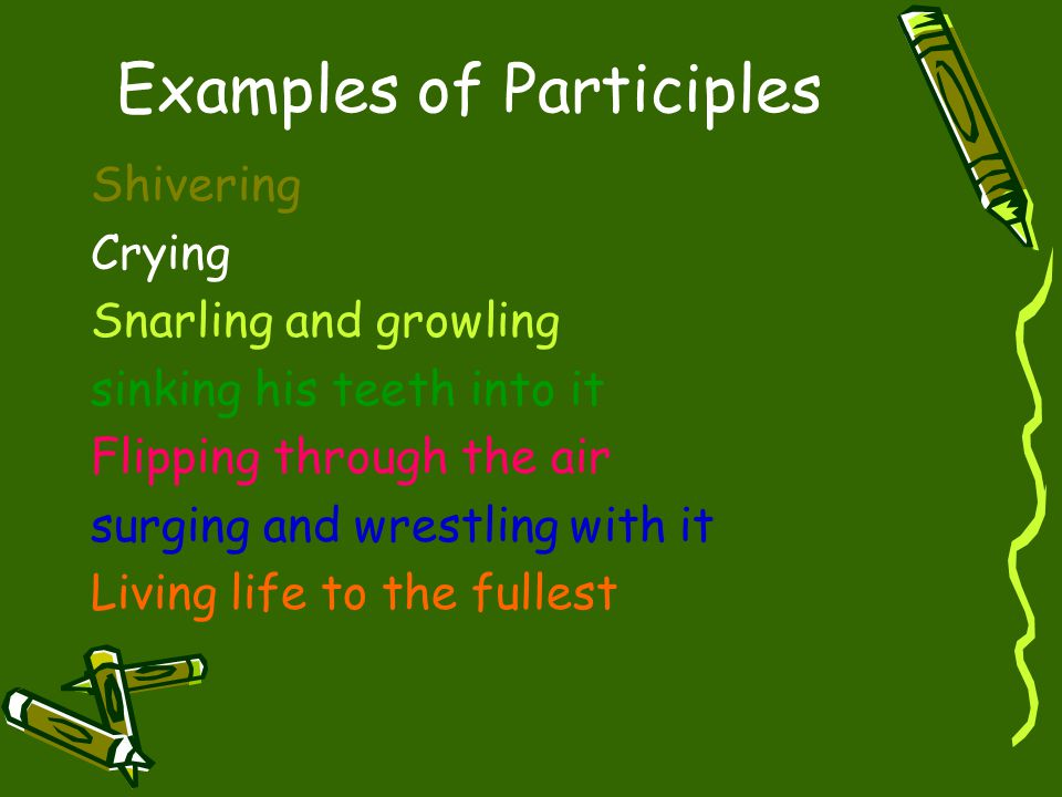 Examples of Participles