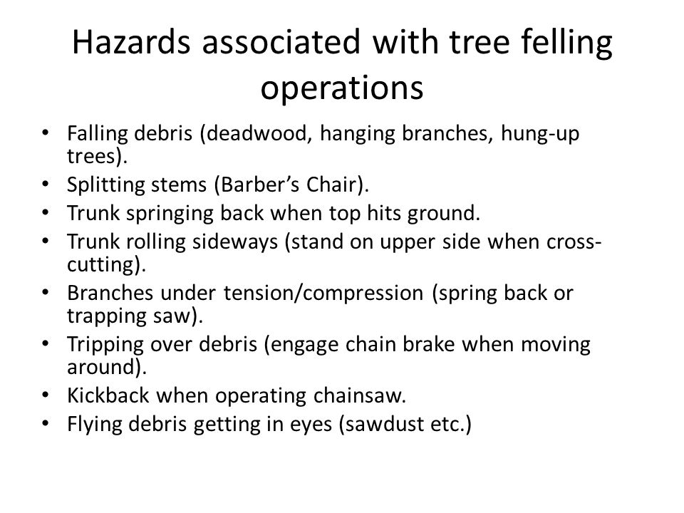 Hazards associated with tree felling operations