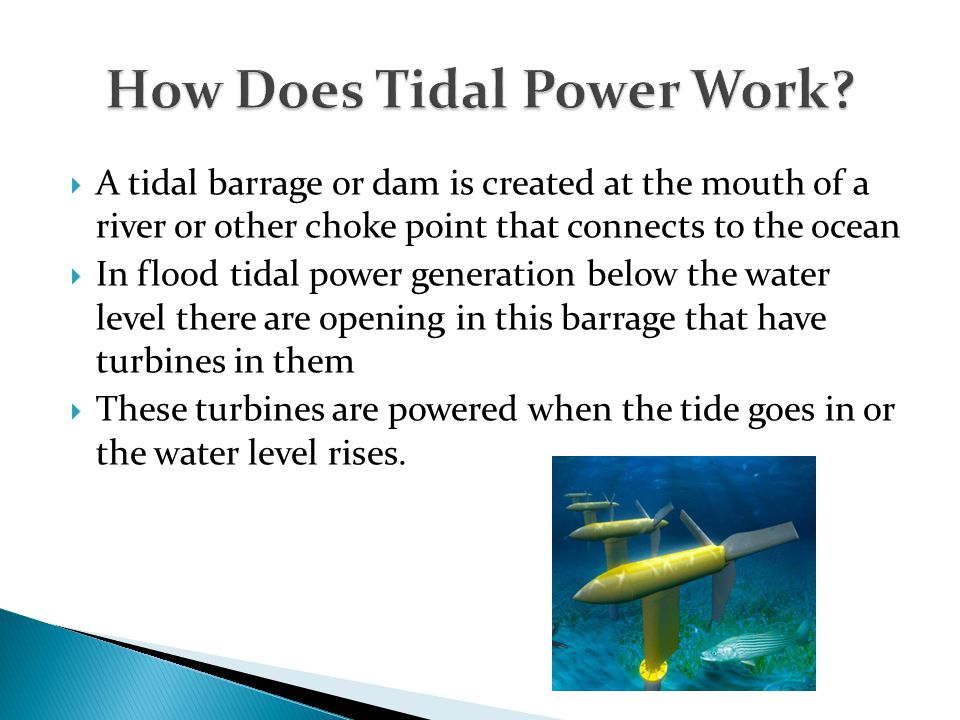 How Does Tidal Power Work