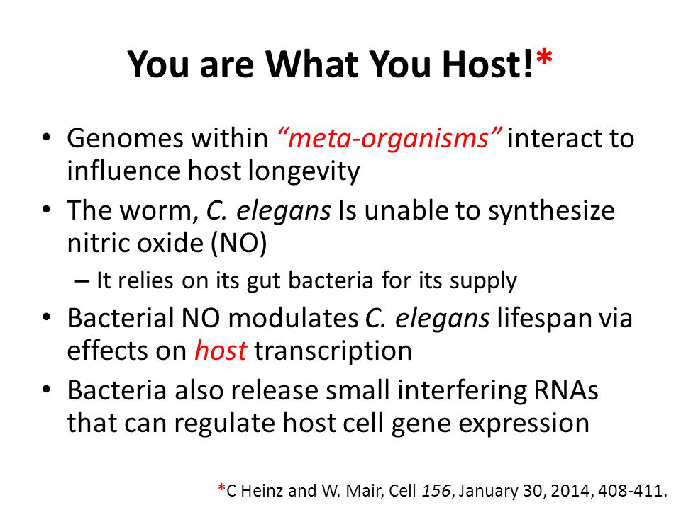 You are What You Host!* Genomes within meta-organisms interact to influence host longevity.