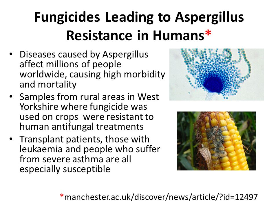 Fungicides Leading to Aspergillus Resistance in Humans*