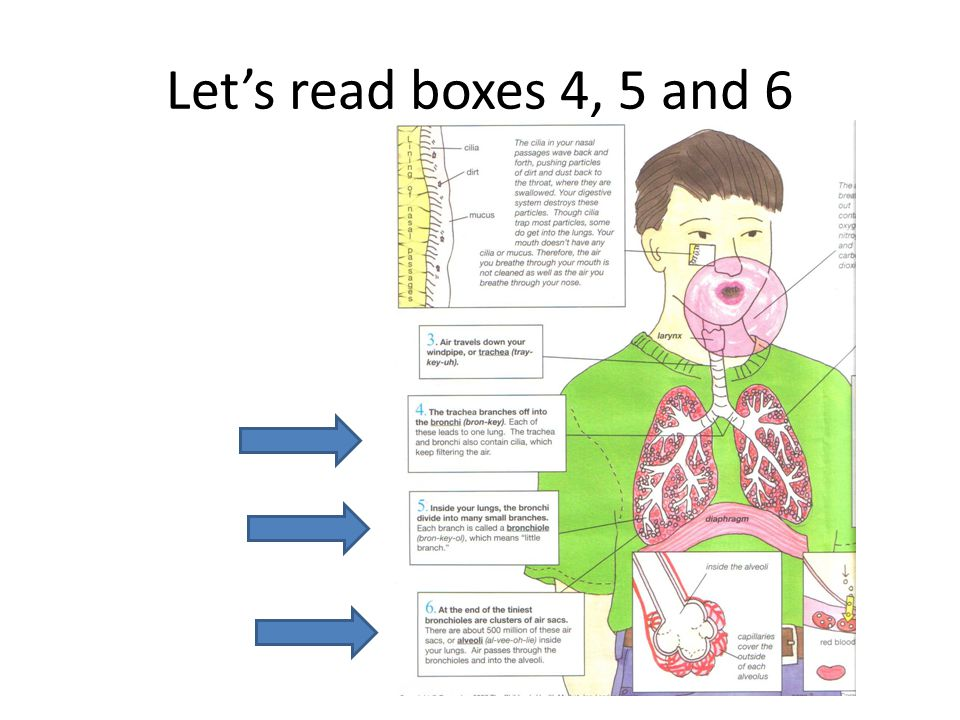 Let's read boxes 4, 5 and 6
