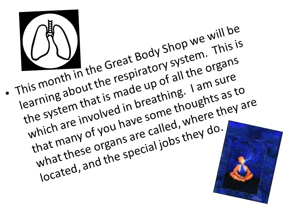 This month in the Great Body Shop we will be learning about the respiratory system.