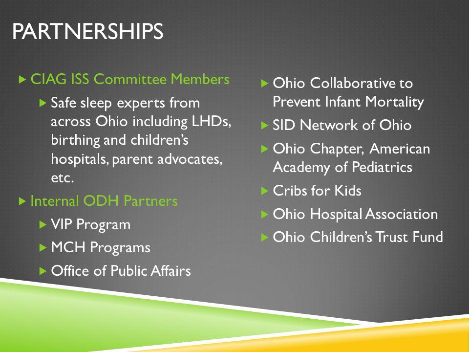 Partnerships CIAG ISS Committee Members