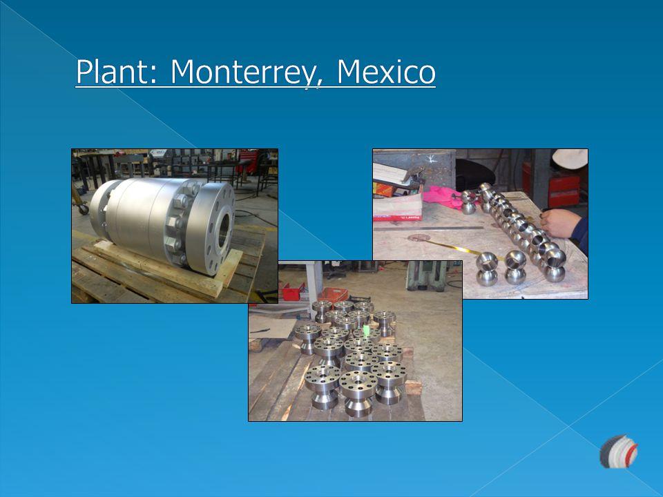 Plant: Monterrey, Mexico