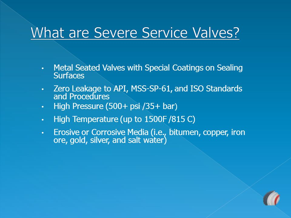 What are Severe Service Valves