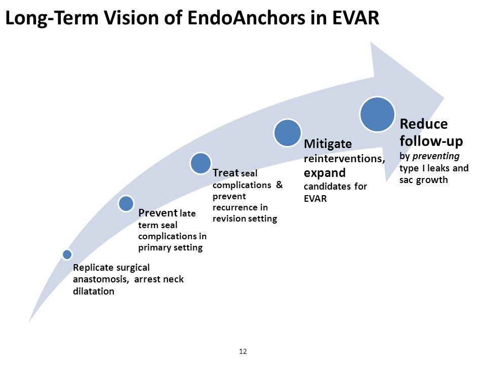 Long-Term Vision of EndoAnchors in EVAR