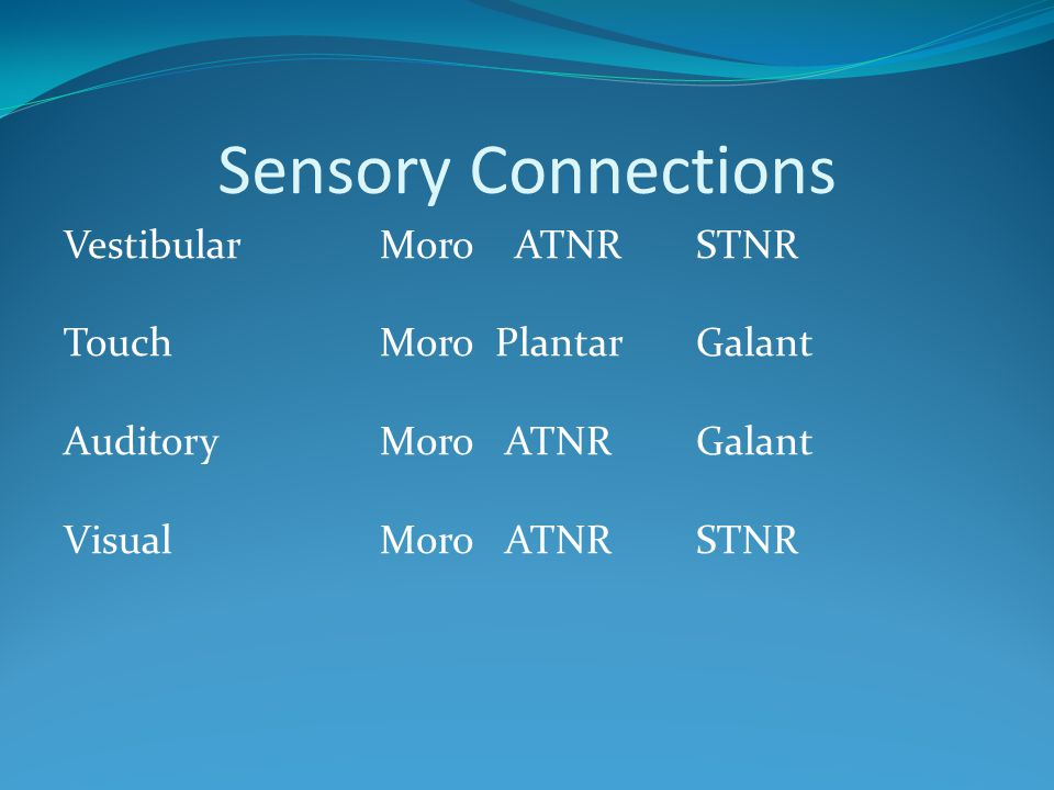 Sensory Connections Vestibular Moro ATNR STNR Touch Moro Plantar Galant Auditory Moro ATNR Galant Visual Moro ATNR STNR