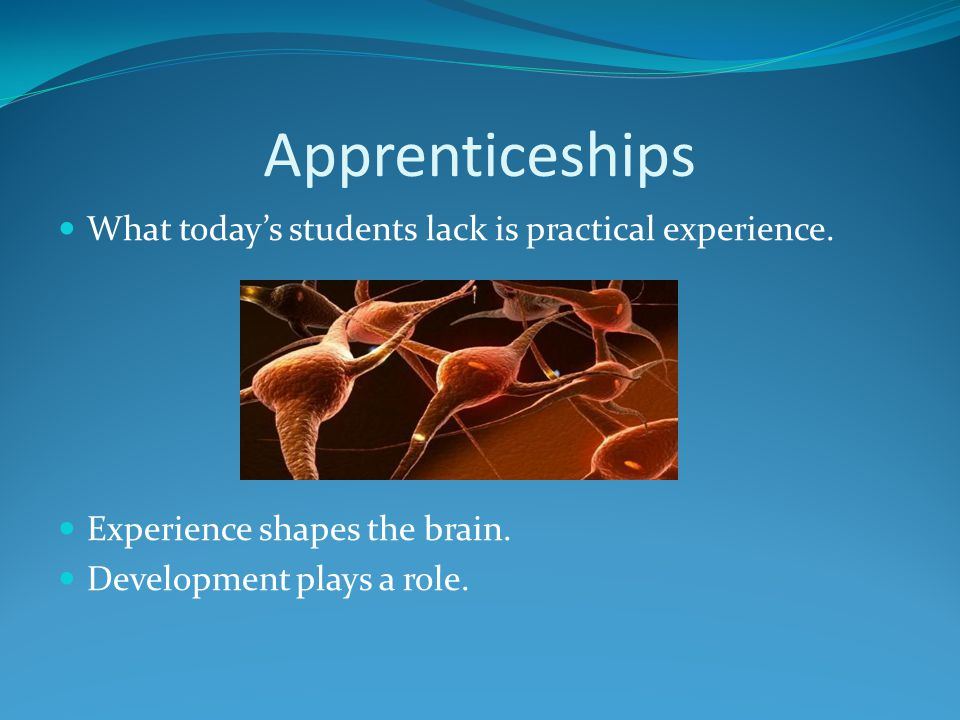 Apprenticeships What today's students lack is practical experience.