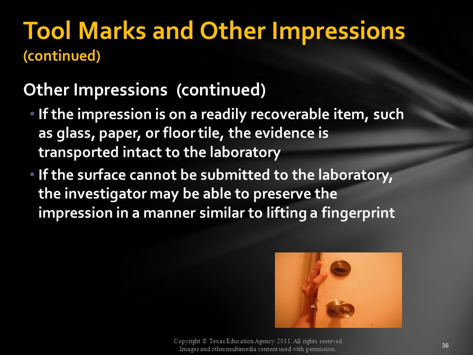 Tool Marks and Other Impressions (continued)