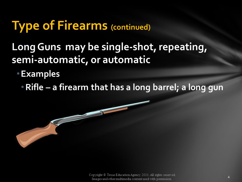 Type of Firearms (continued)